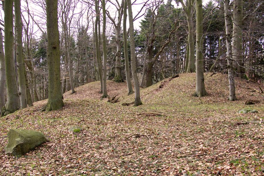 Hügelgräber von Blieschow (Foto: F. Ruchhöft)