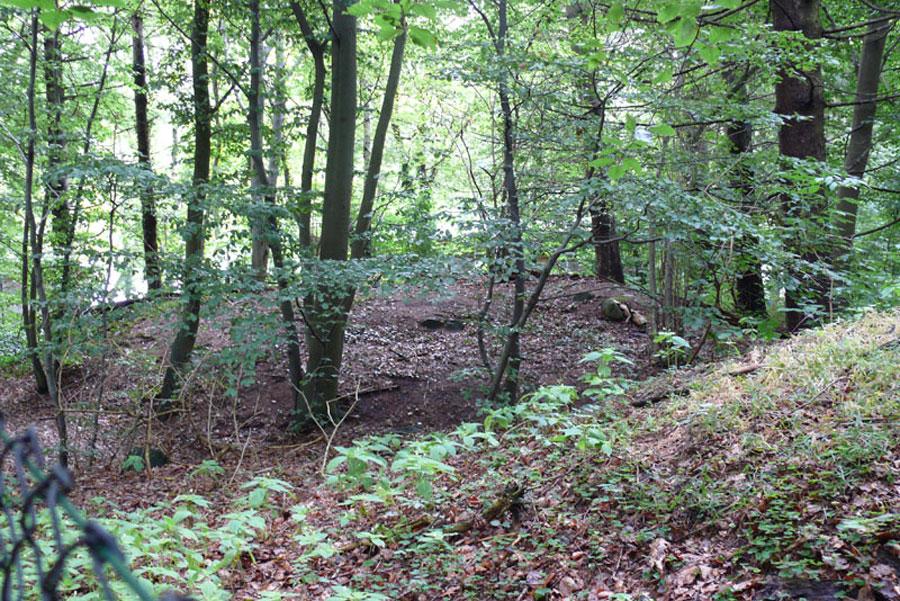 Hügelgräber in Binz (Foto: F. Ruchhöft)