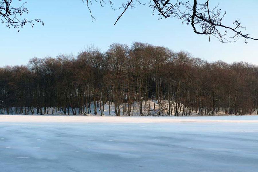 Burgwall Plau-Gaarz (Foto: F. Ruchhöft)