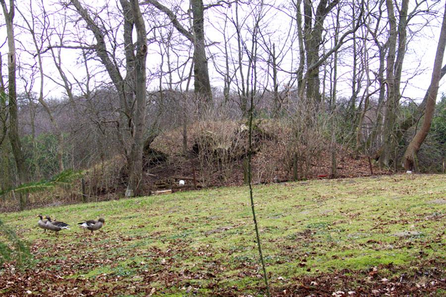 Blieschow - Hügelgrab (Foto: F. Ruchhöft)