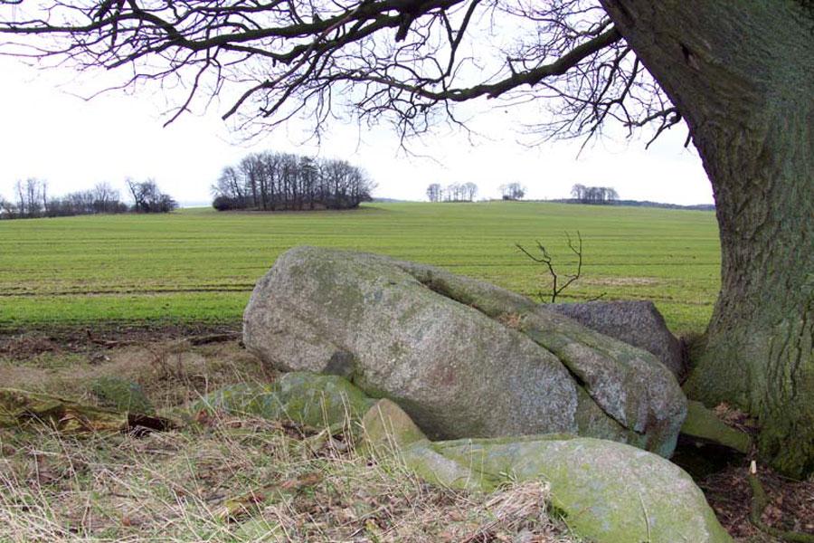 Gräber von Nadelitz (Foto: F. Ruchhöft)