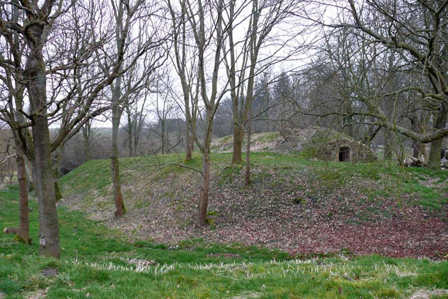 Burg Helpt (Foto: F. Ruchhöft)