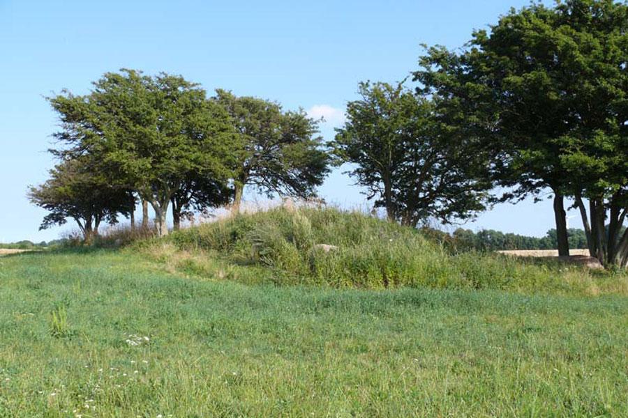 Großsteingrab von Starrvitz (Foto: F. Ruchhöft)