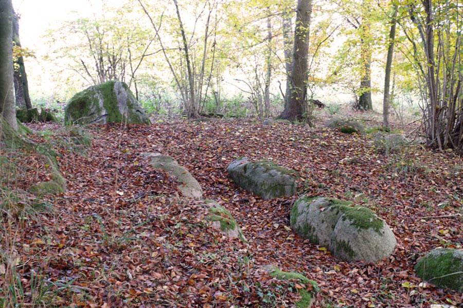 Rest eines Großdolmens in einem Hügel (Foto: F. Ruchhöft)