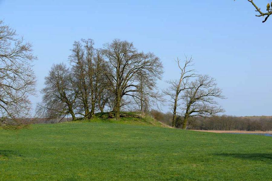 Turmhügel in Stuer (Foto: F. Ruchhöft)