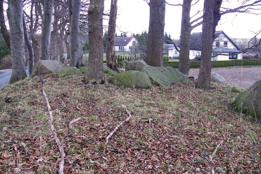 Großsteingrab von Nadelitz (Foto: F. Ruchhöft)
