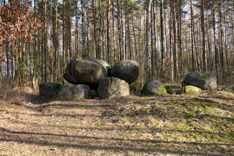 Großstein bei Sparow (Foto: F. Ruchhöft)
