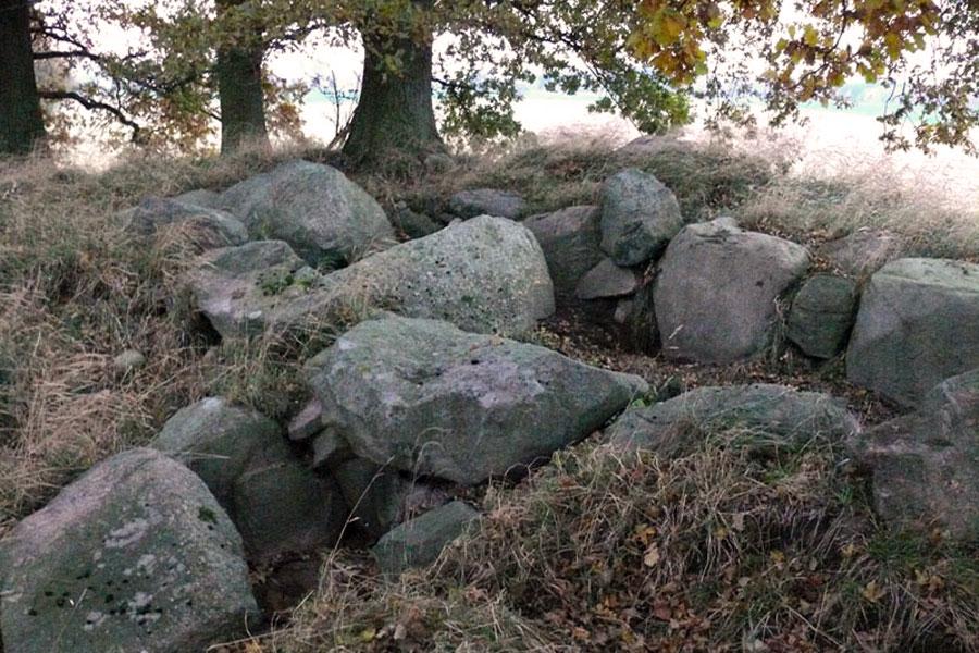 Großsteingräber Gnewitz (Foto: F. Ruchhöft)
