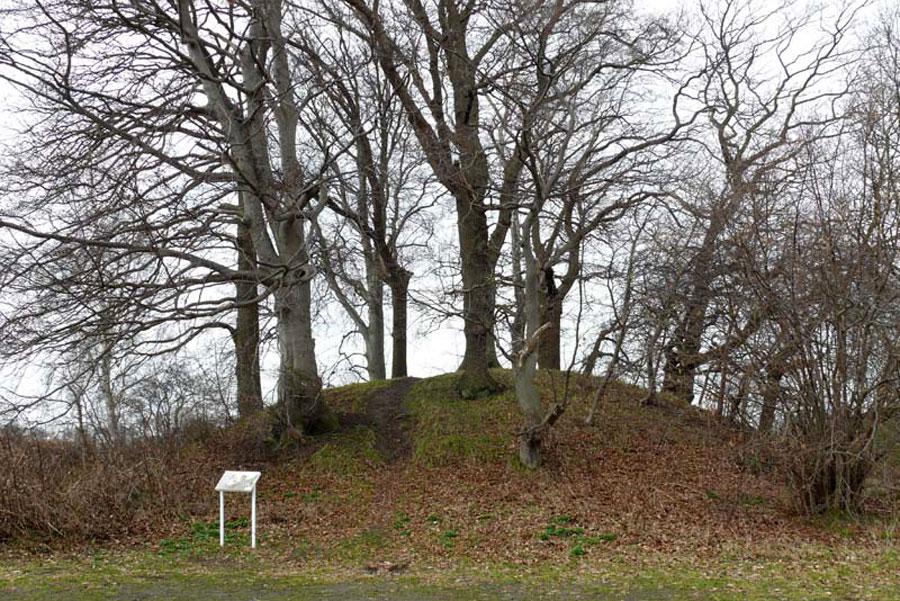 Hügelgräber von Putbus (Foto: F. Ruchhöft)